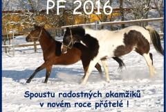 PF 2016 1